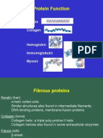 Protein Function 06