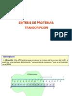 SINTESIS_DE_PROTEINAS (1)
