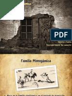 Historia y Familia- Familia Monogámica