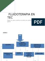 Fluidoterapia en Tec