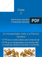 Clase 3 Transportes
