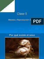 Clase 5 Meiosis