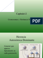 Clase 9 Patrones de Herencia y Cariotipo