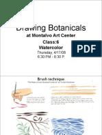 Drawing Botanicals, Class 6 :