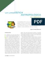 2_la Linguistic A Antropologica en Mexicao Bent a Court