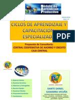0presentacion_propuestas Servicios Profesionales Dante Gamarra