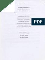 Informe Preliminar de la Comisión Ad-Hoc creada por Resolución SPU – 111/04