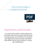 segmentos-pulmonares-y-1221284423293986-8