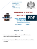 genetica laboratorio..cariotipo!!!