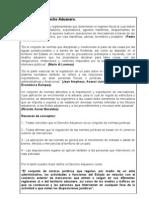 DERECHO ADUANERO1