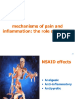 1.4.1 Slide Kit Pain & Inflammation