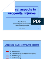 Clinical Aspects in Urogenital Injuries
