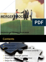 Merger Process(7)