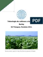 Tehnologia de Cultivare a Tutunului Burley