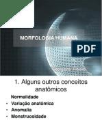 Aula 02 -      INTRODUÇÃO A MORFOLOGIA HUMANA I