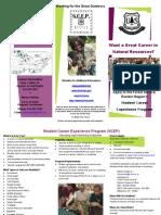 SCEP Brochure