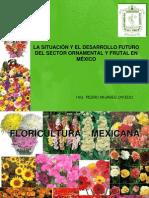 Cictamex Flores y Frutas
