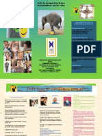 Brochure Inteligencia Emocional