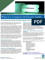DNV_EnergyAudits