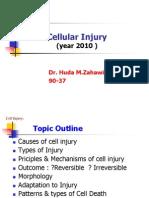 Cell_Injury_H.Zahawi_2010.ppt معدل