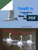 Instinct Guides Birds,What Guides Man