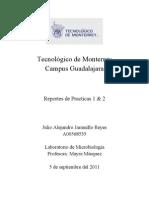Lab Oratorio de Micro Reporte 1