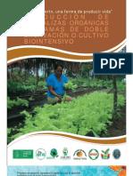 Produccionde Hortalizas Bio Cultivo Bio Intensivo Bolivia