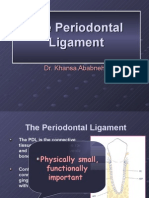 Periodontal Ligament-summer