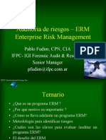 Auditoria de Riesgos - ERM Enterprise Risk Management