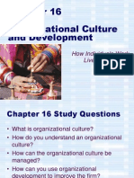 Chapter 10 - Organizational Culture