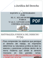 Naturaleza Jurídica del Derecho Social