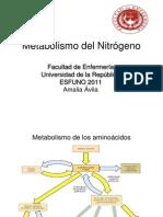 Metabolismo del nitrógeno clase 9
