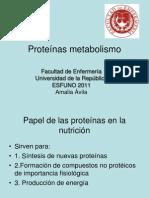 Proteínas- metabolismo clase 8