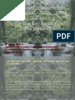 03._Servicios_Ambientales
