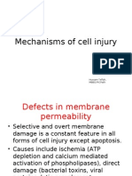 5. Mechanisms of Cell Injury