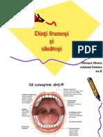 Lectie de Sanatate Orala Clasele v-VIII Marusca Mioara