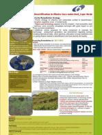 WP4.5 Stakeholder Workshop 3 Cape Verde (Poster)