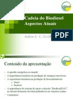 ApresentaçãoCadeiaBiodiesel-Joelcio-2010