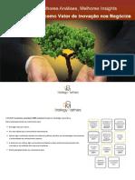E-Book Sustentabilidade como Vetor de Inovação nos Negócios DOM Strategy Partners 2011