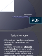 Neuroanatomia - Histologia Do
