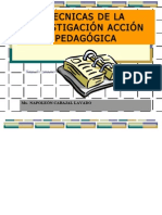 TECNICAS DE IAP