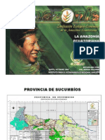 Amazonia en Cifras