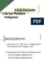 Convenio Nº 169 OIT - EXPOSICIÓN CD