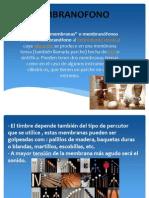 EXPOSICION DE MEMBRANAS