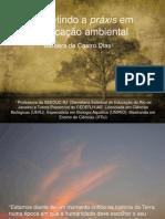 Refletindo a práxis em educação ambiental