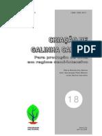 18 Galinha Caipira
