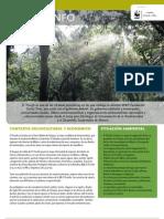 WWF FCS 14 Chiapas El Triunfo