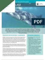 WWF FCS 16 Arrecife Mesoamericano - Yum Balam