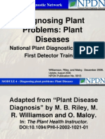 Diagnosing Plant Problems-Plant Diseases