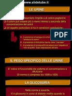 Eliminazione urinaria 2 parte